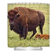 Mama Watching Over Baby Shower Curtain by Tamyra Ayles
