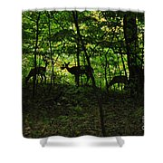 Mamma And Twins Shower Curtain