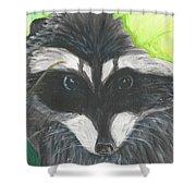 Mamma Raccoon  Shower Curtain