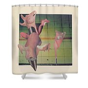 Mammariae Shower Curtain