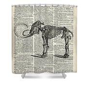 Mammoth Elephant Bones Over A Antique Dictionary Book Page Shower Curtain