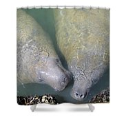 Mammoth Love Shower Curtain