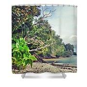 Mamutik Island Shower Curtain