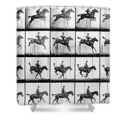 Man And Horse Jumping Shower Curtain by Eadweard Muybridge