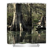 Man Fishing In Cypress Swamp Shower Curtain