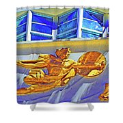 Man Of Deco Shower Curtain