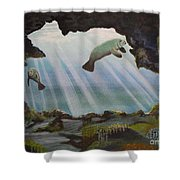 Manatee Cave Shower Curtain