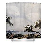Manatee Skies Shower Curtain
