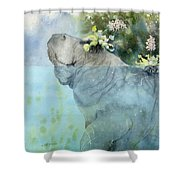 Manatees New Hat Shower Curtain