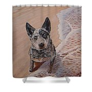 Mancha At The Beach Shower Curtain