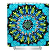 Mandala 111511 A Shower Curtain