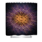 Mandala 171115-3253-2 Shower Curtain