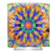 Mandala 4 Shower Curtain