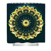 Mandala 467567 Shower Curtain