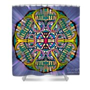 Mandala 53 Shower Curtain