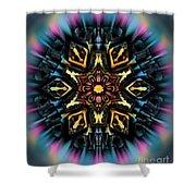 Mandala 67 Shower Curtain