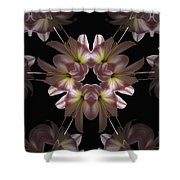 Mandala Amarylis Shower Curtain