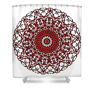 Mandala - Amulet 868 For Those Born In ..... Shower Curtain