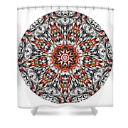 Mandala - Amulet 873 For Those Born In ..... Shower Curtain