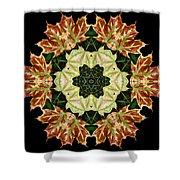 Mandala Autumn Star Shower Curtain