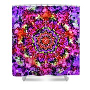 Mandala Floral Red Purple Shower Curtain