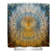 Mandala From The Garden 2 - Flower Feather Shield Shower Curtain