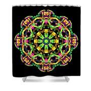 Mandala Image #14 Created On 2.26.2018 Shower Curtain