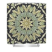 Mandala Leaves In Pale Blue, Green And Ochra Shower Curtain