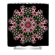 Mandala Monadala  Lisa Shower Curtain