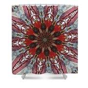 Mandala Of Glass Shower Curtain