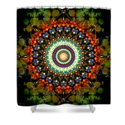 Mandala Of Loves Journey Shower Curtain