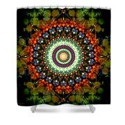Mandala Of Loves Journey Shower Curtain