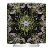 Mandala Sea Sponge Shower Curtain