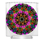 Mandala - Talisman 1099 - Order Your Talisman. Shower Curtain
