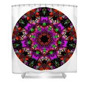 Mandala - Talisman 1100 - Order Your Talisman. Shower Curtain