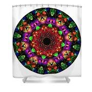 Mandala - Talisman 1102 - Order Your Talisman. Shower Curtain