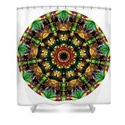 Mandala - Talisman 1103 - Order Your Talisman. Shower Curtain