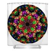 Mandala - Talisman 1105 - Order Your Talisman. Shower Curtain