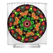 Mandala - Talisman 1106 - Order Your Talisman. Shower Curtain