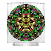 Mandala - Talisman 1107 - Order Your Talisman. Shower Curtain