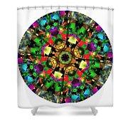 Mandala - Talisman 1108 - Order Your Talisman. Shower Curtain