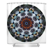 Mandala - Talisman 1111 - Order Your Talisman. Shower Curtain