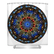 Mandala - Talisman 1122 - Order Your Talisman. Shower Curtain