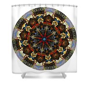 Mandala - Talisman 1123 - Order Your Talisman. Shower Curtain