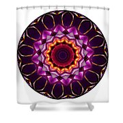 Mandala - Talisman 1383 Shower Curtain