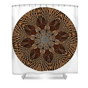 Mandala - Talisman 1384 Shower Curtain