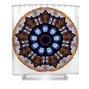 Mandala - Talisman 1396 Shower Curtain