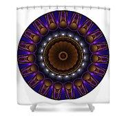 Mandala - Talisman 1398 Shower Curtain