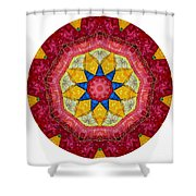 Mandala - Talisman 1404 Shower Curtain