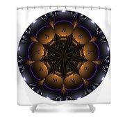 Mandala - Talisman 1430 Shower Curtain